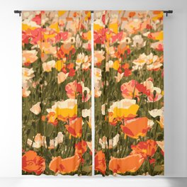 Poppies in the Sun Blackout Curtain