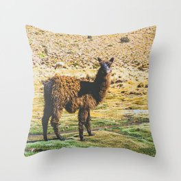 Wandering Llama in the Bolivian Desert Throw Pillow