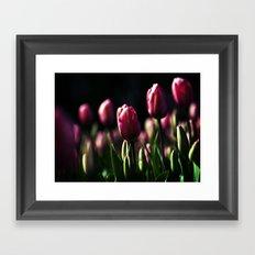 Tulips , Flowers  , Tulips , Flowers  games, Tulips , Flowers  blanket, Framed Art Print