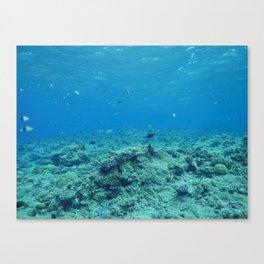 Visibility Canvas Print