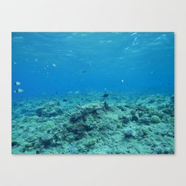 Visibility Canvas Print