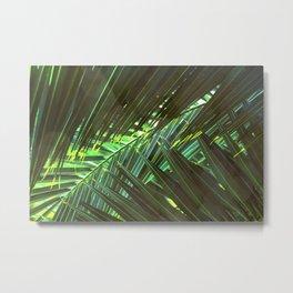 Coconut palm leaves Metal Print