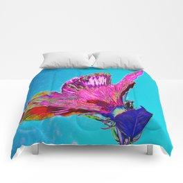 Hibisco Comforters