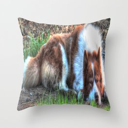 sleaping Throw Pillow