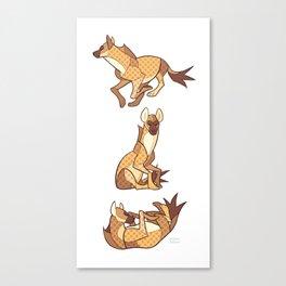 Hyena Canvas Print