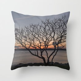 Sunset tree Niles Beach Throw Pillow