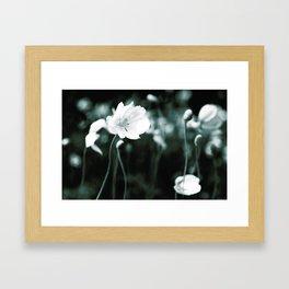 White Japanese Anemone flowers Framed Art Print