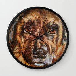 Sam Close-up Wall Clock