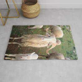 A Flock Of Sheep In A Rural Setting Rug