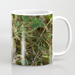 The frog Coffee Mug