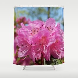 Rosy Rhododendron Flowers Shower Curtain