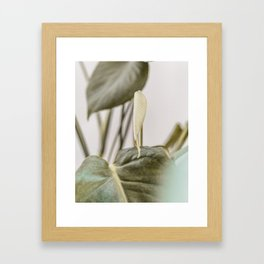 Green plant Leaves art digital print - Minimal scandinavian print - Modern green plant print for int Framed Art Print