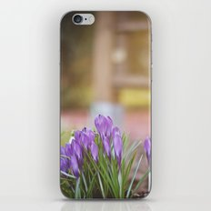 lilac. iPhone & iPod Skin
