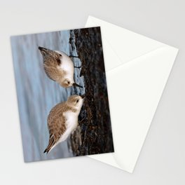 A Pair of Sanderlings Shares: A Meal is Better When Eaten Together Stationery Cards