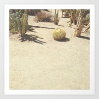cacti Art Prints featuring Cacti by Amber Barkley
