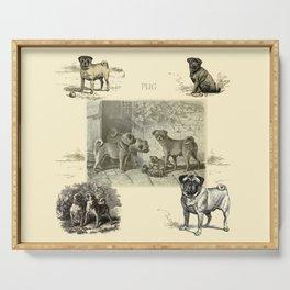 PUG DOGS Illustration Serving Tray
