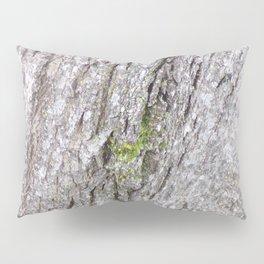 Mossy Bark, Bark of Tree, Moss onTree, Background Texture Pillow Sham