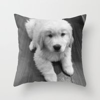 golden retriever Throw Pillows featuring Golden Retriever by Kimberly Jones