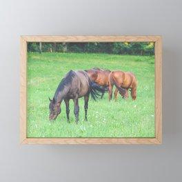 Horse Herd // Horses Framed Mini Art Print