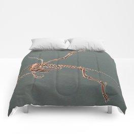 Gryphon Skeleton Anatomy No Labels Comforters