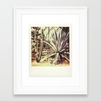 garfield Framed Art Prints featuring Garfield Conservatory  by Misha Ashton-Moore