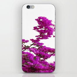 LILAC PURPLE BOUGAINVILLEA VINES CLIMBING ON WHITE iPhone Skin