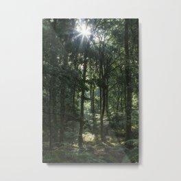 Early Autumn Sunrise Metal Print