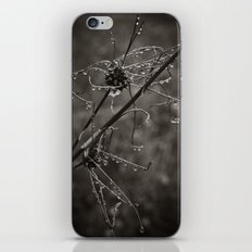 Rain Spirals  iPhone & iPod Skin
