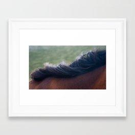 sleeping horse Framed Art Print