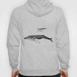 North Atlantic Humpback whale with calf Hoody