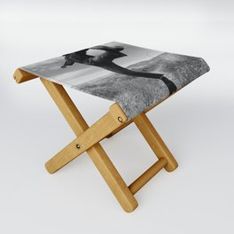Antelope Valley, CA Folding Stool
