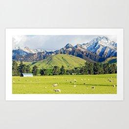 Sheep Station Art Print