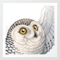 A Snowy Owl Story Art Print