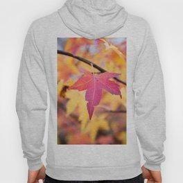 Autumn Still Hoody
