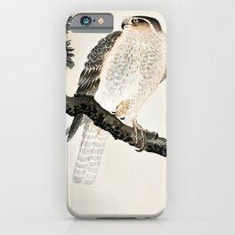 Hawk sitting on a pine tree - Vintage Japanese Woodblock Print Art iPhone Case
