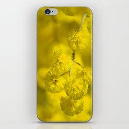 Acacia Macro iPhone Skin
