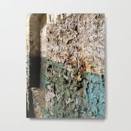 Charming the Paint Off the Walls Metal Print