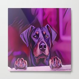 Doberman Looking Out The Window Metal Print