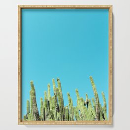 Desert Cactus Reaching for the Blue Sky Serving Tray