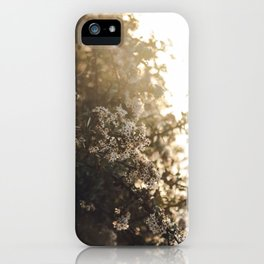 late night conversations with the moon iPhone Case