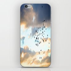 Don't Break Formation iPhone & iPod Skin