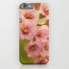 Little Belles iPhone 6s Slim Case