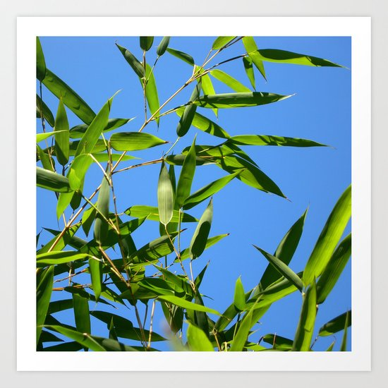 green bamboo II Art Print
