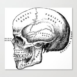 The Medical Patient Canvas Print