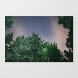 Light in the Trees and Stars in the Sky Canvas Print
