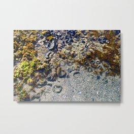Tide Pools Metal Print
