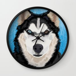 Canadian husky portrait Wall Clock