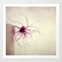 spider Art Prints featuring spider by Claudia Drossert