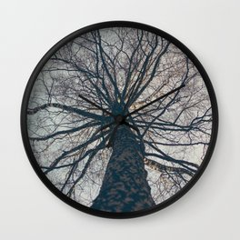Tree lines Wall Clock