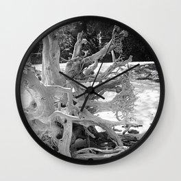 Roots Wall Clock